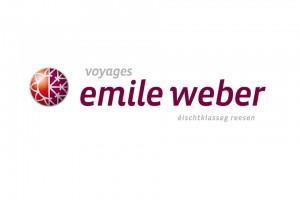 logo-vew
